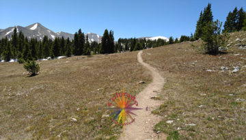 Lost Lake Trail, below Cottonwood Pass, up the mountain from Buena Vista Colorado