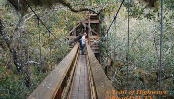 Canopy Walk-Tower-Trail-Myakka-State Park-Florida-Trail of Highways-RoadTrek TV-Organic Content-Marketing-Social SEO-Travel-Media-