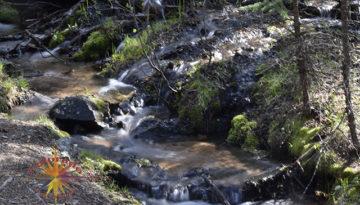 Ute Creek Lost Creek Wilderness Colorado