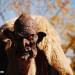 Creeper-Emma Crawford-Coffin Races-Manitou Springs-Colorado