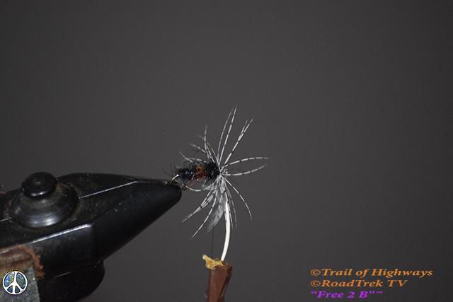 Sparkle Soft Hackle-Ant-Fly Fishing-Tying-Fly-Wet Fly-River-Trail of Highways-RoadTrek TV-Get Lost in America-Content Marketing-Social Media-Branding-Travel-Media-Fishing-Photography-4