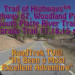 Highway 67 Woodland Park South Platte River Trailhead Colorado Trail…