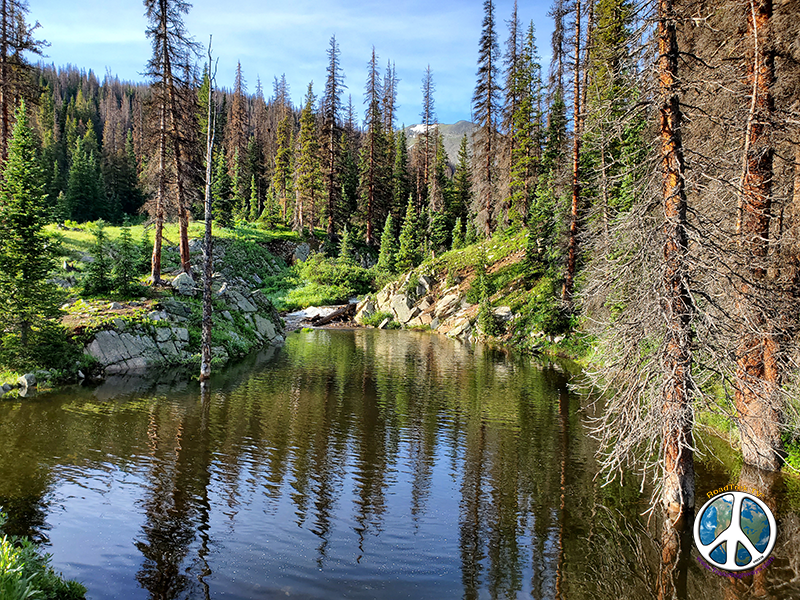 Holding pond at Sawmill curve on the Alpine Tunnel Trail
