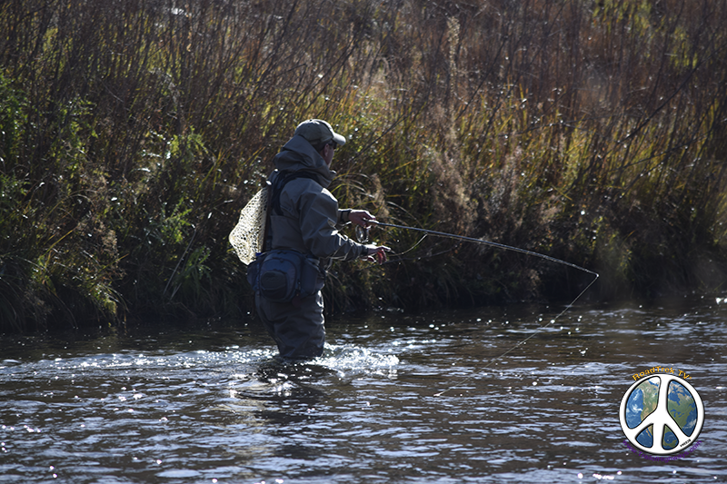 Fly fishing in the South Platte River