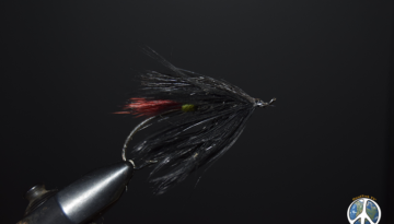 Fly-Tying Evolution Throughout history, both fly-tying and fly-design have not changed much over time. When looking back, in fact, almost all changes...