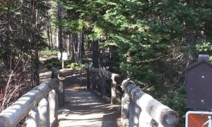 Wild Basin Trail-Calypso Cascades-Ouzel Falls Trail-RMNP-Coloradolive-Copeland Falls-Trail of Highways-RoadTrek TV-Tom Ski-Social SEO-Photography-2
