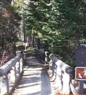Wild Basin Trail-Calypso Cascades-Ouzel Falls Trail-RMNP-Coloradolive-Copeland Falls-Trail of Highways-RoadTrek TV-Tom Ski-Social SEO-Photography-2