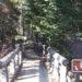 Wild Basin Trail, Photo Essay Two