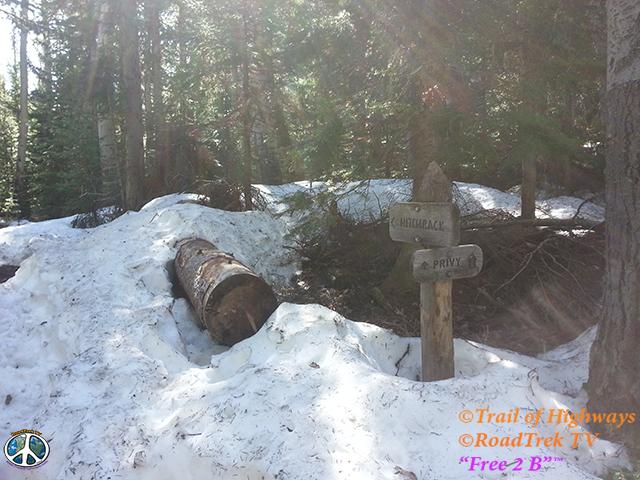 Wild Basin-Calypso Cascades-Ouzel Falls Trail-RMNP-Coloradolive-Copeland Falls-Trail of Highways-RoadTrek TV-Tom Ski-Social SEO-Photography-29