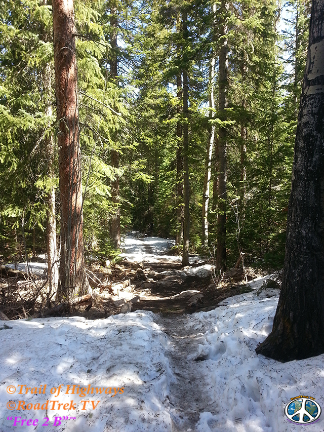 Wild Basin-Calypso Cascades-Ouzel Falls Trail-RMNP-Coloradolive-Copeland Falls-Trail of Highways-RoadTrek TV-Tom Ski-Social SEO-Photography-30