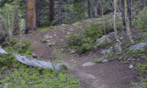 Mount Yale Trail-14er-Colorado-Hiking-Climbing-Trail of Highways-RoadTrek TV-Social SEO-Organic-Content Marketing-Tom Ski-Skibowski-Photography-Travel-2