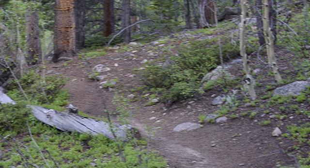 Mount Yale Trail-14er-Colorado-Hiking-Climbing-Trail of Highways-RoadTrek TV-Social SEO-Organic-Content Marketing-Tom Ski-Skibowski-Photography-Travel-2