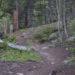 Mount Yale Hike, Photo Essay One