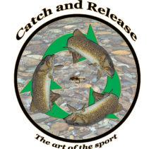 recycle fish c art flynew