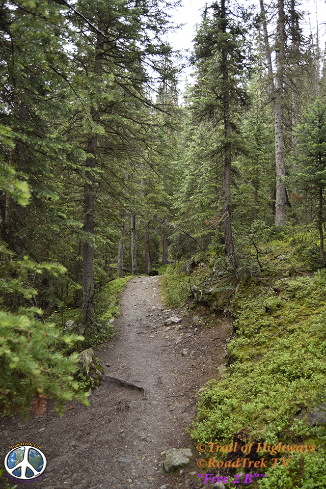 Ptarmigan Lake Trail-Colorado-Hiking-Trail of Highways-RoadTrek TV-Social SEO-Organic-Content Marketing-Tom Ski-Skibowski-Photography-Travel-14