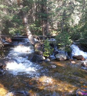 Hartenstein Lake,Trail, Denny Creek Trailhead,Collegiate Peaks Wilderness,Browns Pass,