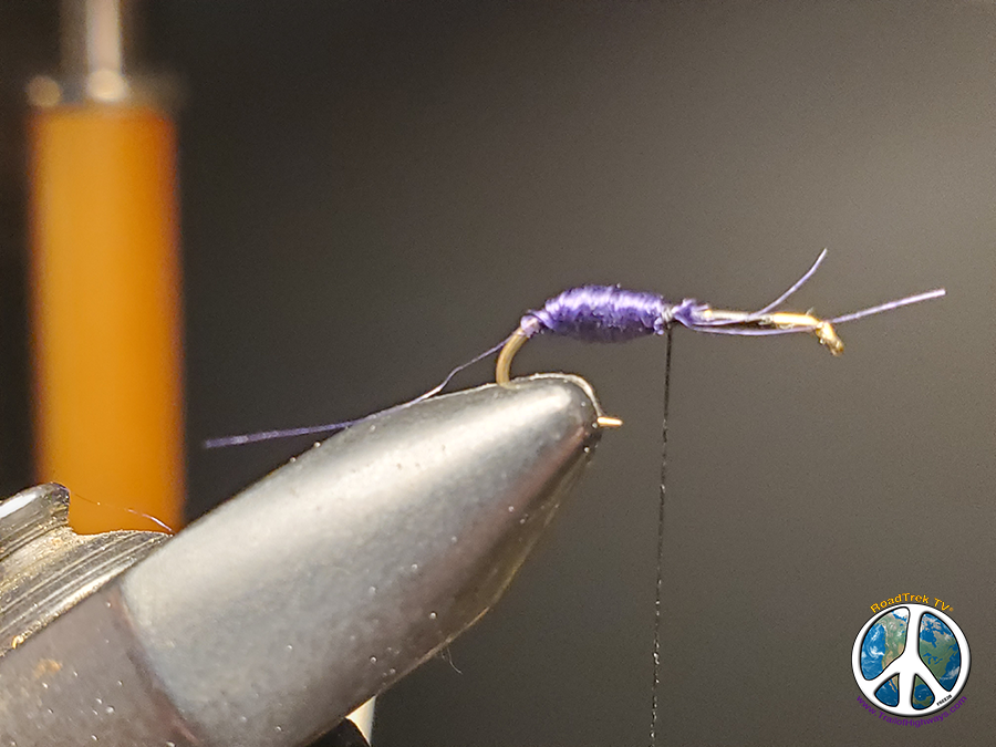 Purple Ant Fly Tying Fly Tying a Purple Ant May Lead to Mountain Lake Trout Adventures Most think of ant being, brown, black, red, you get the idea. Purple adds a whole new flavor to the recipe book of fly tying. I have always like to tie up patterns that add a different hue of color to the trout's diet. Beside being the odd fly out seems to attract more fish to it.