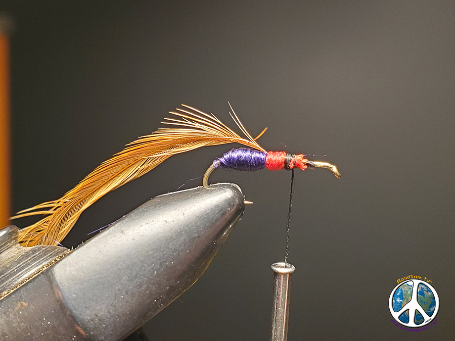 Red floss wrapped forward Purple Ant Fly Tying Fly Tying a Purple Ant May Lead to Mountain Lake Trout Adventures Most think of ant being, brown, black, red, you get the idea. Purple adds a whole new flavor to the recipe book of fly tying. I have always like to tie up patterns that add a different hue of color to the trout's diet. Beside being the odd fly out seems to attract more fish to it.