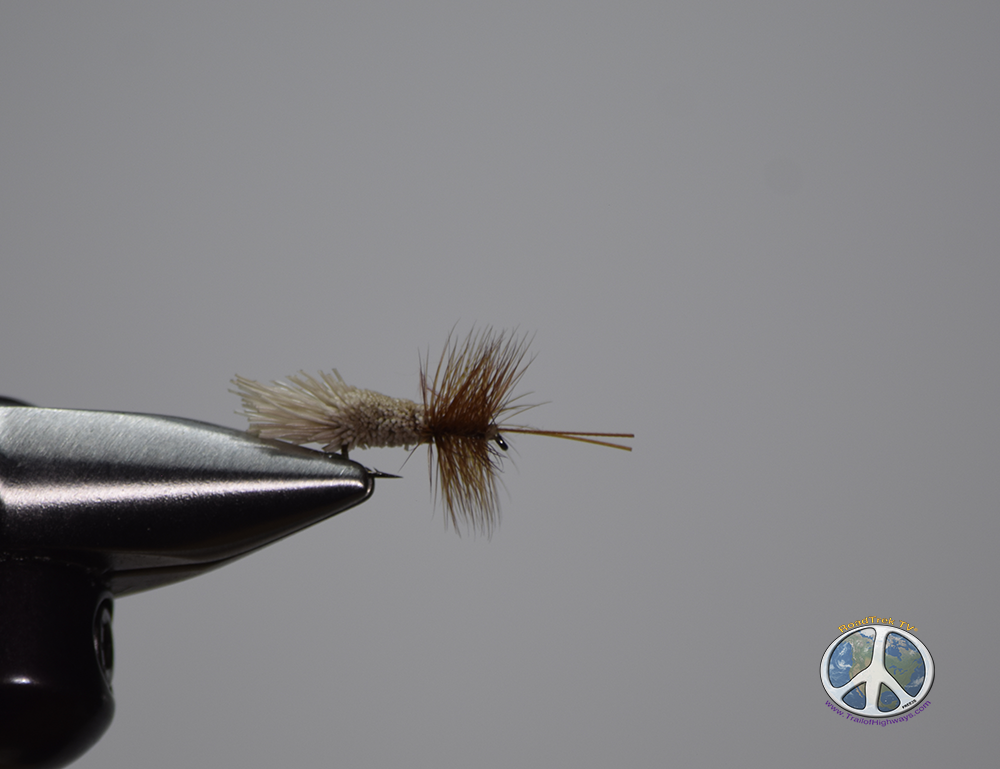 Fly Fishing Necessity: Caddis Flies Caddis flies are one of the most important and necessary aquatic insects in the country