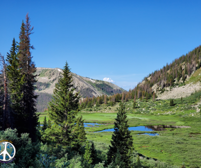 Beaver ponds on the lower south side of the pass, just above treeline