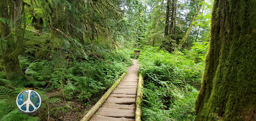 Not many bridges or built up walks ways on this trail. A couple of springs do cross it.