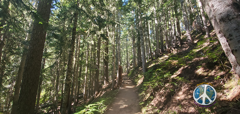 Starting here Wonderland Trail to Summerland start a steady incline getting steeper all the way to Summerland