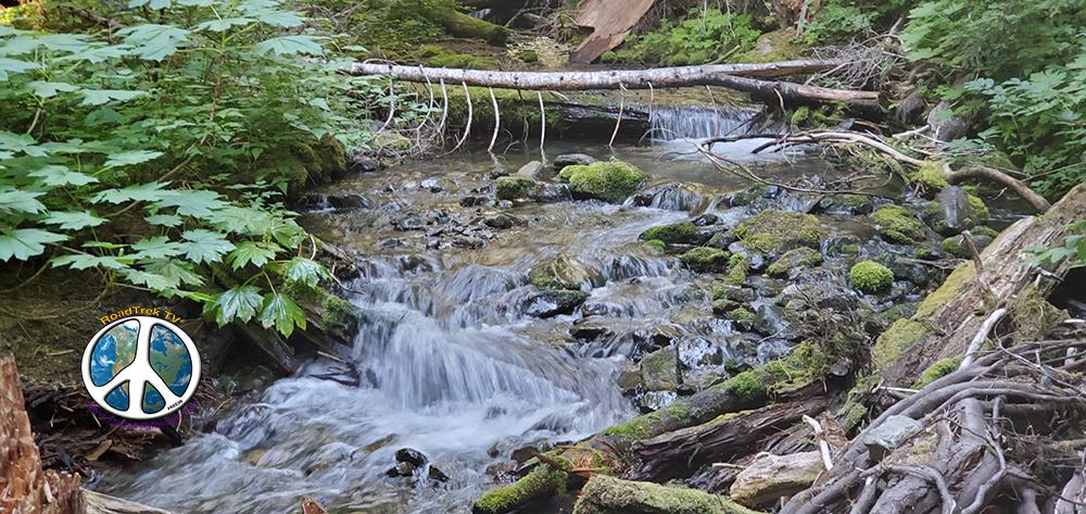 Trail side stream