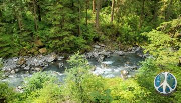 Boulder Creek below the trail